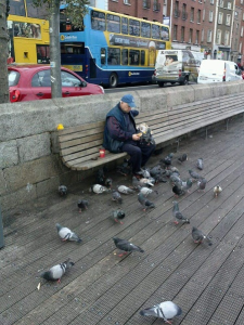 """Feed the birds, feed the birds"" sang my brain as we watched this cute grandfather take care of dozens of pigeons! At times he was dressed in birds as all his attention rested on his feathered friends. We interested him not in the least!"